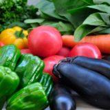 新鮮な野菜たち