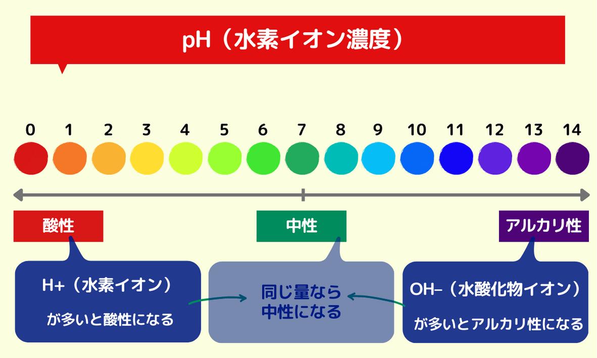pH(水素イオン濃度)
