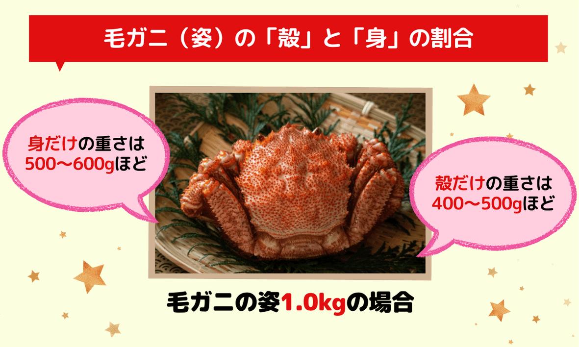 毛ガニ姿の殻と身の重さ割合