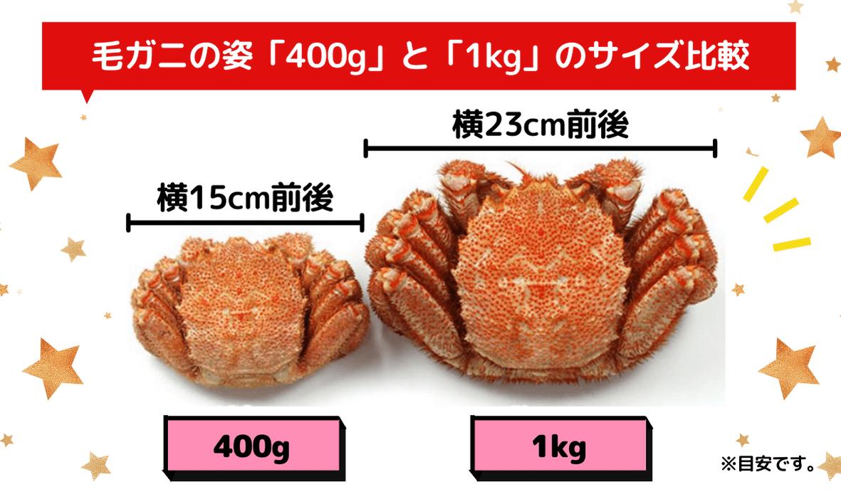 400gと1kgの毛ガニサイズ比較